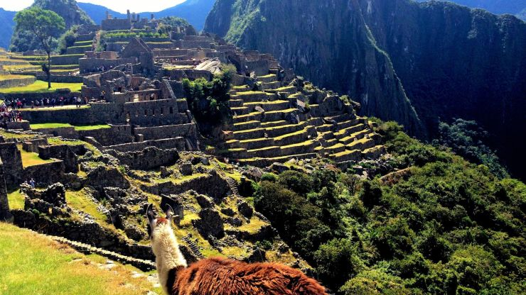 View of Machu Picchu, Peru, South America