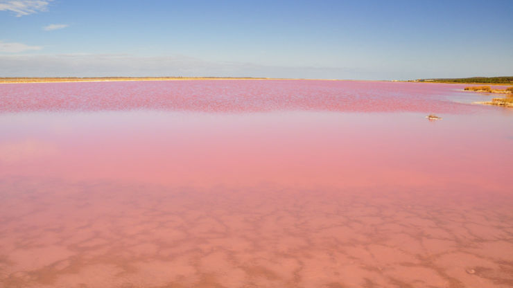 The pink Hillier Lake in Australia