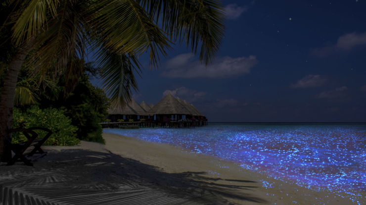 Vaadhoo island in the Maldives at night